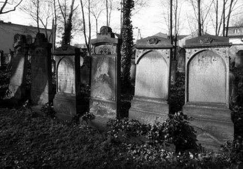 Legnica (Liegnitz). Macewy z drugiej połowy XIX wieku w alei głównej cmentarza żydowskiego z 1838 roku, który jest nadal czynny. Fot. Piotr Piluk (1997)